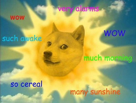crooked manners doge sun