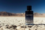 Top Colognes to Wear This Winter
